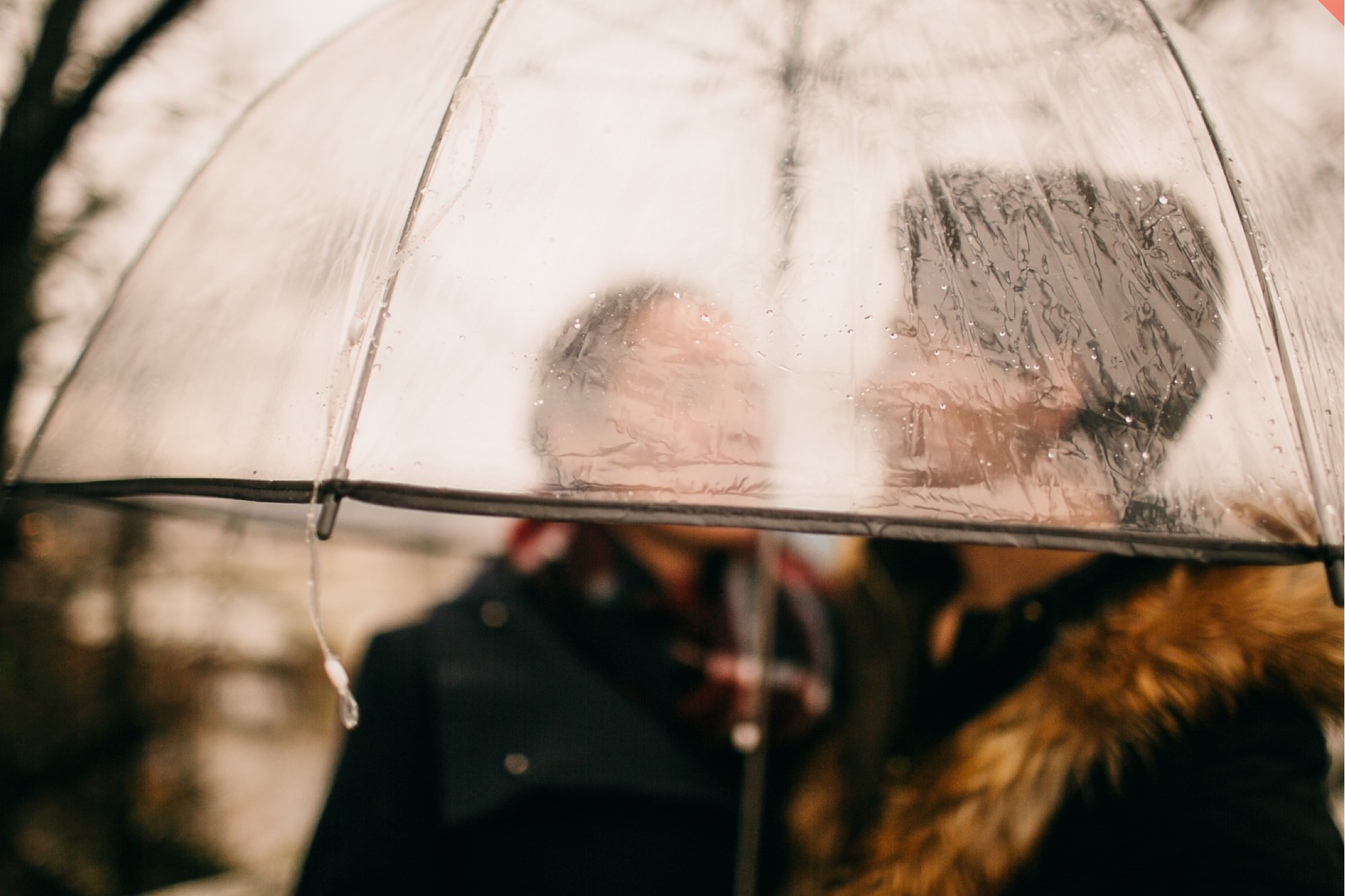 A lesbian couple stand under a transparent umbrella in the rain.