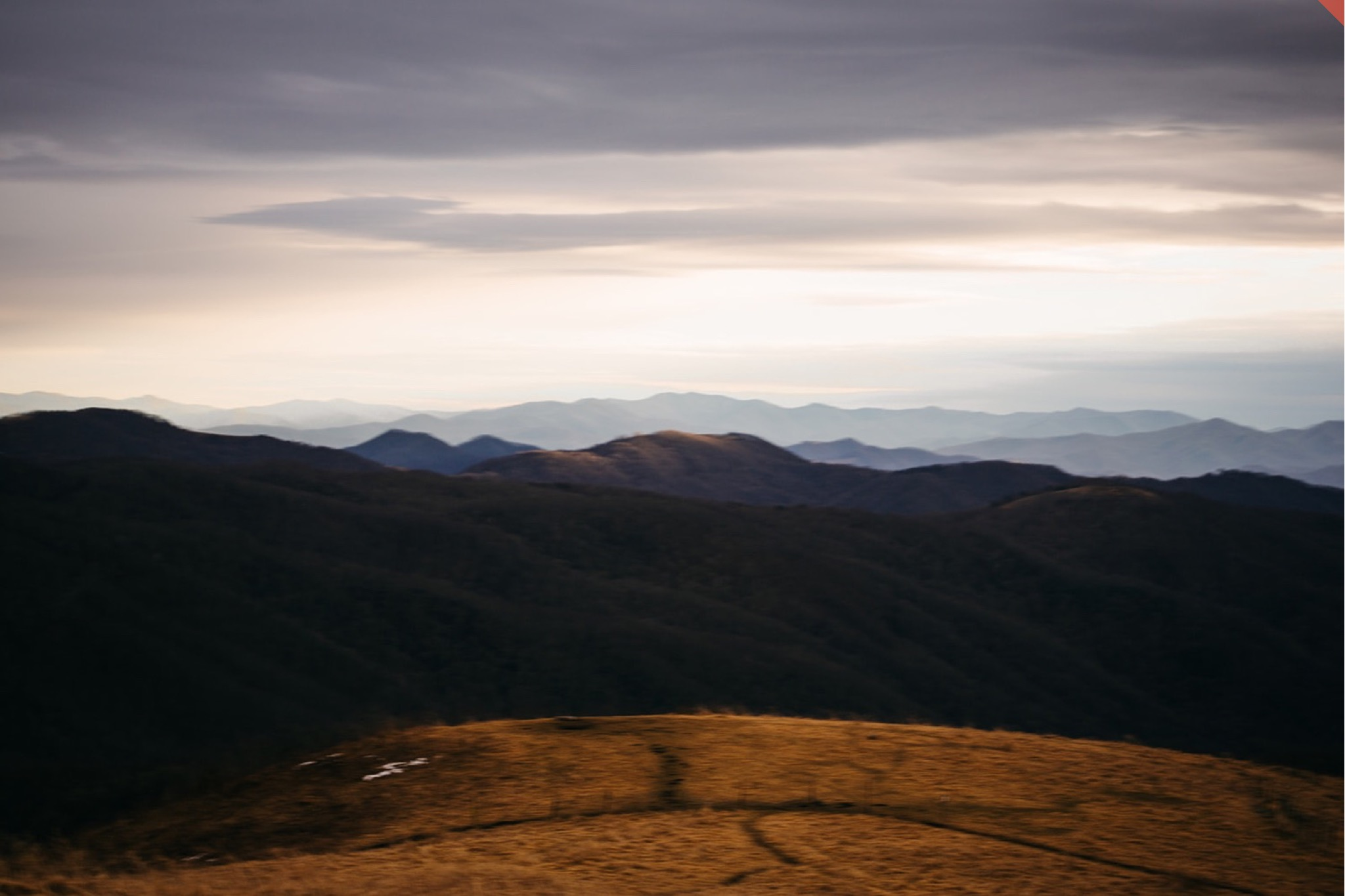 The view of the Blue Ridge Mountains through the fog as seen from the top of Max Patch.