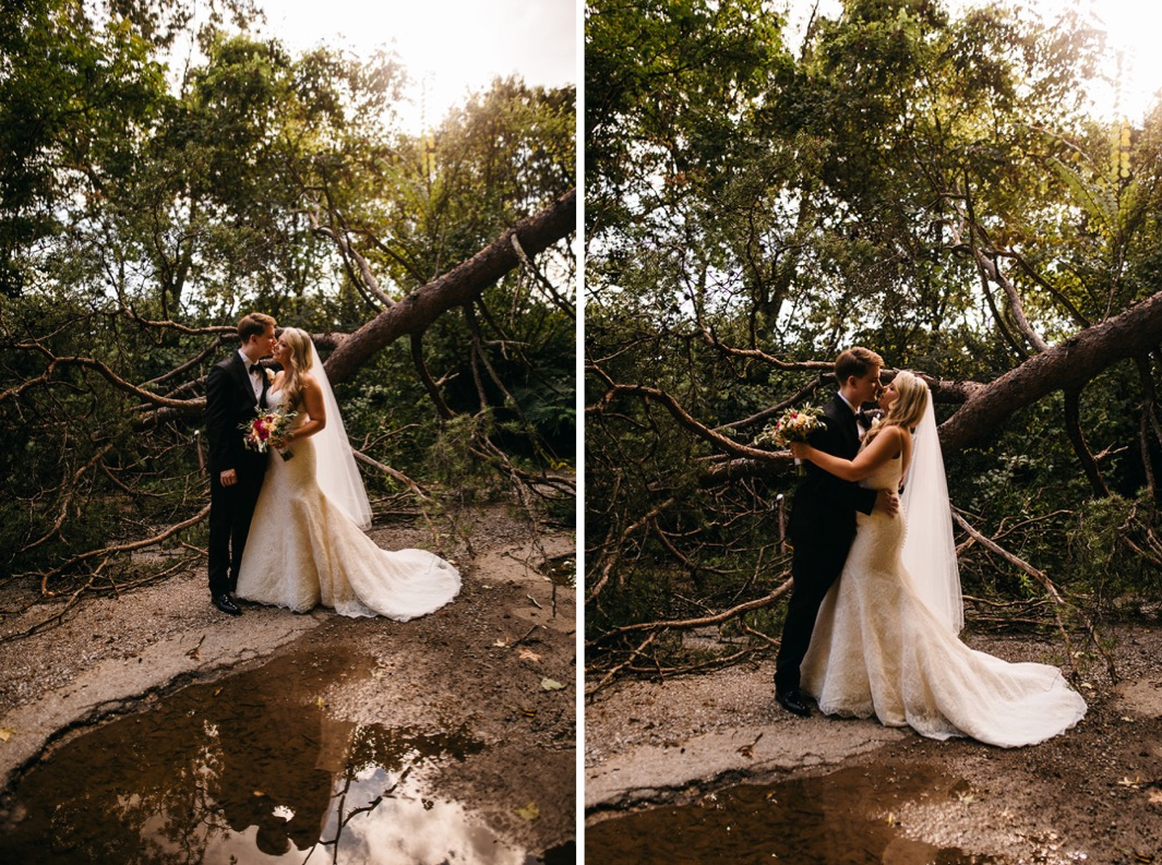 Bride and groom stand in front of a tree as they kiss at their wedding at the Turnbull building.