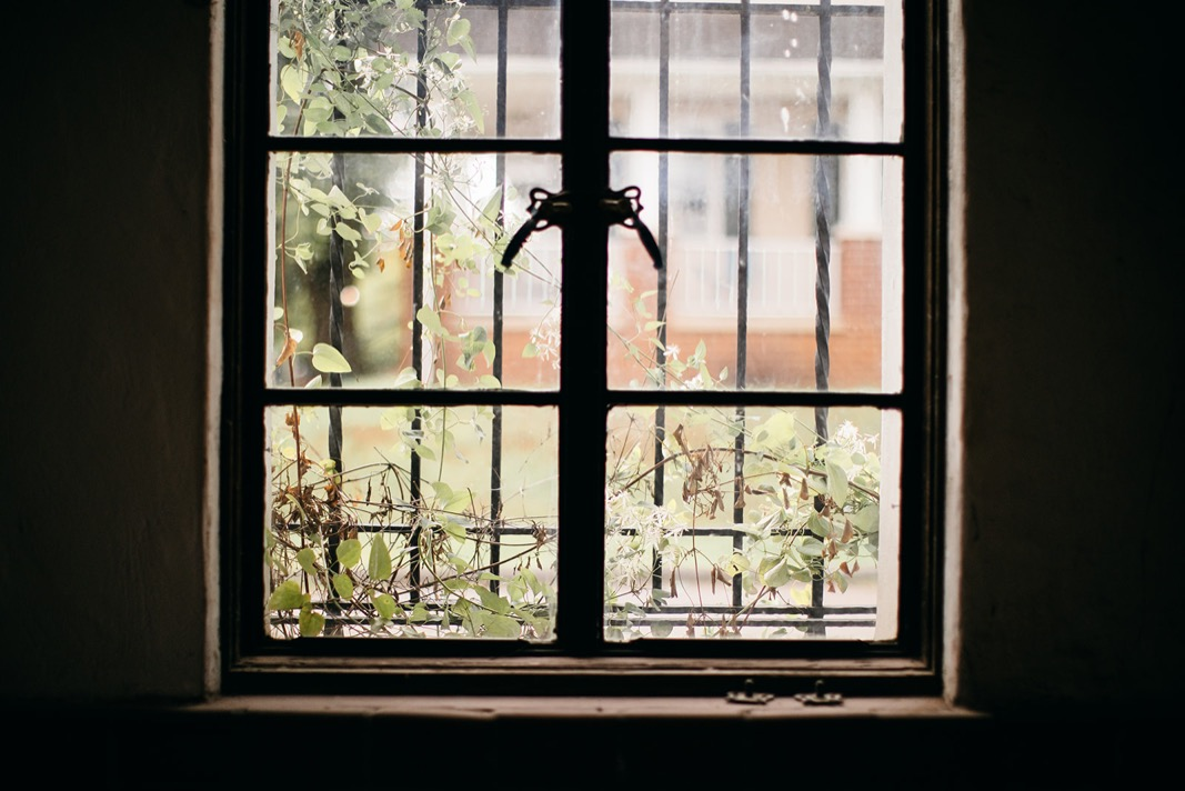 dark interior looking through window to ivy covered wrought iron bars