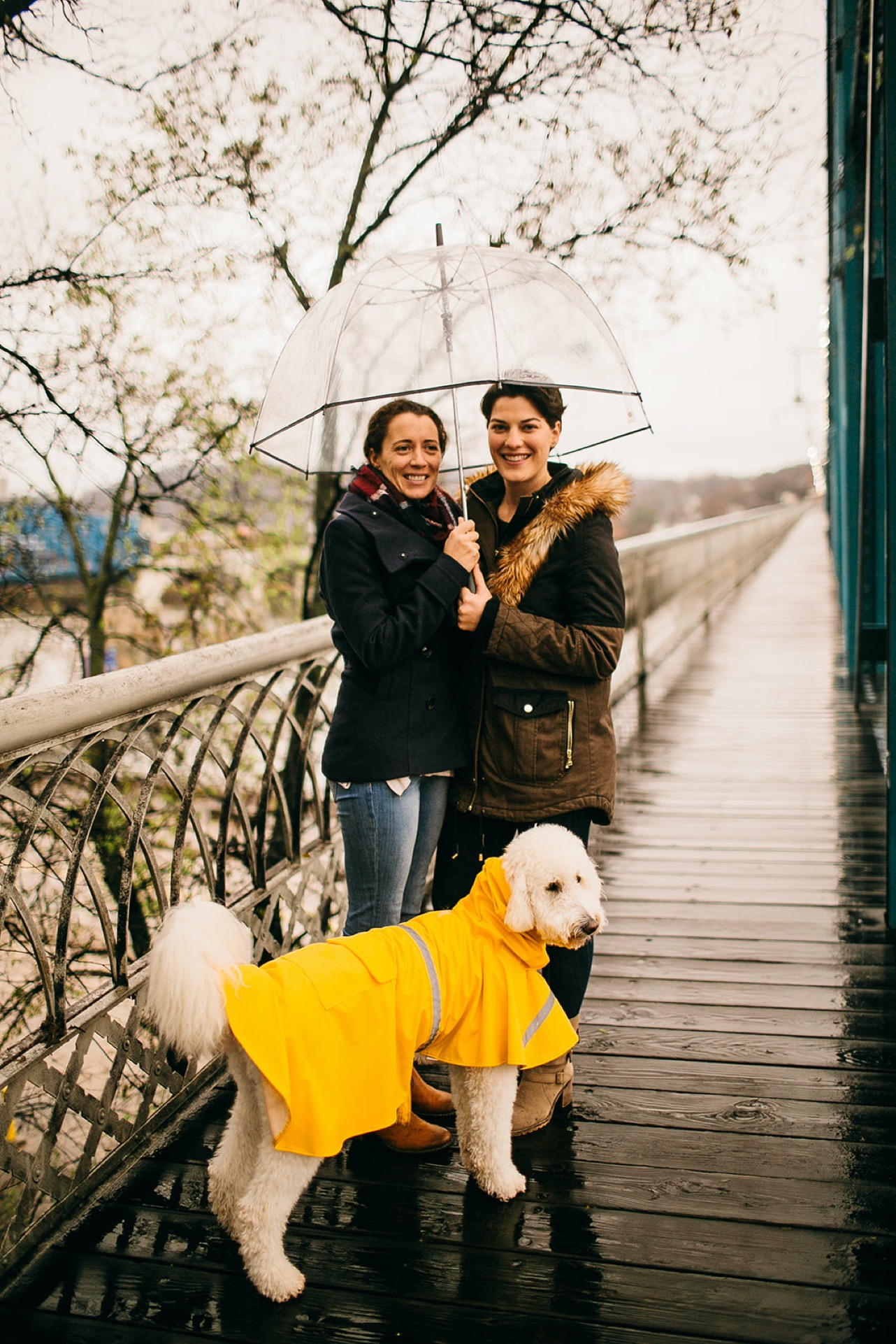 An engaged lesbian couple poses under a clear umbrella on the Walking Bridge in Chattanooga. Their white goldendoodle stands next to them in a yellow raincoat.
