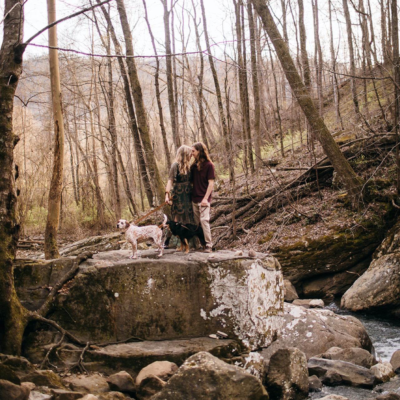 An engaged couple and their brown and white speckled dog poses atop a rock on a forest stream.
